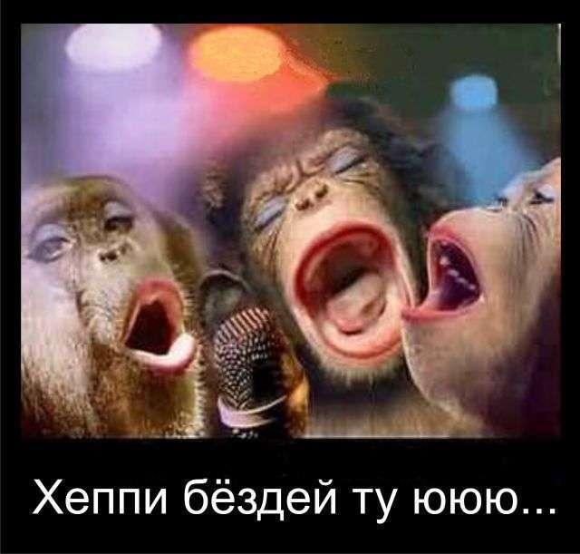 s3img_33825158_2143_1.jpg