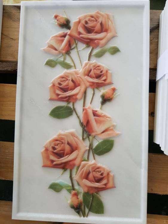 tralcio di rose.jpg