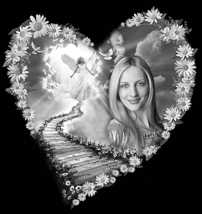 сердце из ромашек 2.jpg
