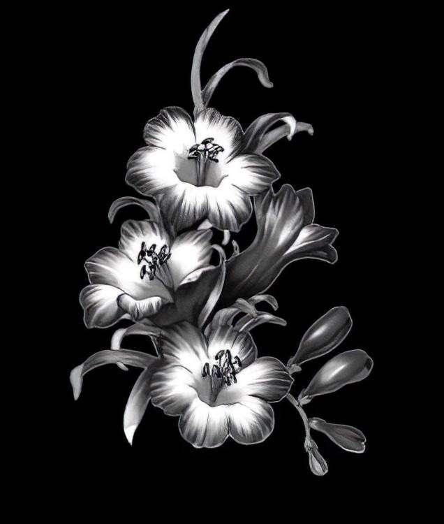 Цветы - 824шт_02-edit.jpeg